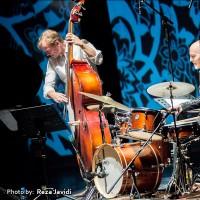 گزارش تصویری تیوال از کنسرت آلدو رومانو / عکاس: رضا جاویدی | عکس