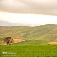 طبیعت خراسان شمالی   عکس