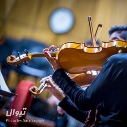 کنسرت ارکستر آرکو | عکس