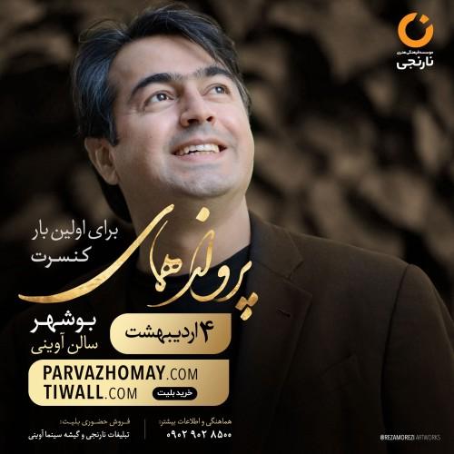 عکس کنسرت پرواز همای (بوشهر)