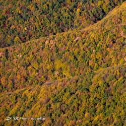 طبیعت پاییزی ارسباران | عکس