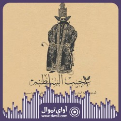 نمایش عجیب السلطنه | گفتگوی تیوال با بهنود محمدیپور  | عکس