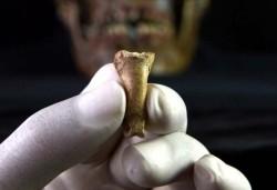 چنگال عقابها، قدیمیترین جواهر اروپا | عکس