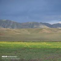 طبیعت زیبای دشت مغان پارس آباد | عکس