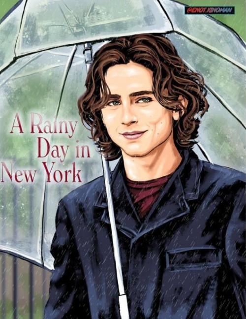 عکس فیلم یک روز بارانی در نیویورک