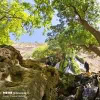 بهشت چهار فصل چهارمحال و بختیاری | عکس