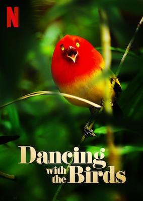 عکس مستند رقص با پرندگان