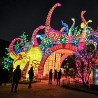 جشنواره نور، پاریس | عکس