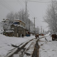 برف بهاری در ارتفاعات چالوس | عکس