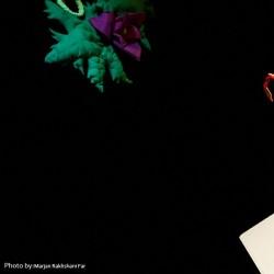نمایش ماندولین و اشکهای جادویی | عکس