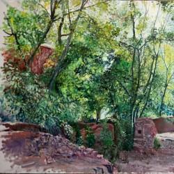 نمایشگاه کویر سبز | عکس