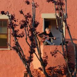 پنجره و بالکنهای جهان در روزهای کرونا | آکلند، آمریکا
