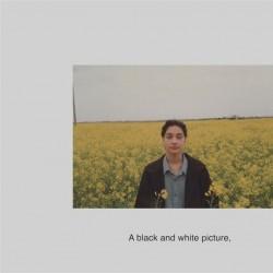 نمایشگاه همقافیه | عکس