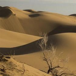 گشتهای فلسفی |گشت پنجم: کویر بادرود - در ستایش سکوت| | عکس