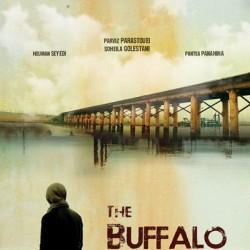 فیلم بوفالو | عکس