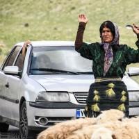 زنان ایل قشقایی در روزهای سخت کوچ | عکس