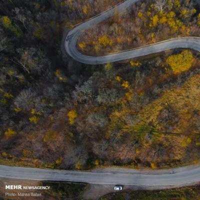 جاده های پاییزی جنگل های هیرکانی | عکس