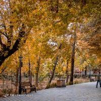 پاییز در پایتخت | عکس