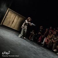 نمایش شپش | عکس