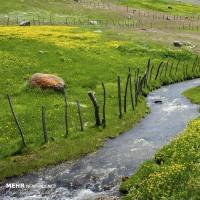 دریاچه نئور و منطقه سوباتان | عکس