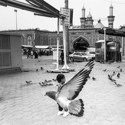 عکسهای موبایلی بخش دوم | پرواز - سید علیرضا رجایی شوشتری