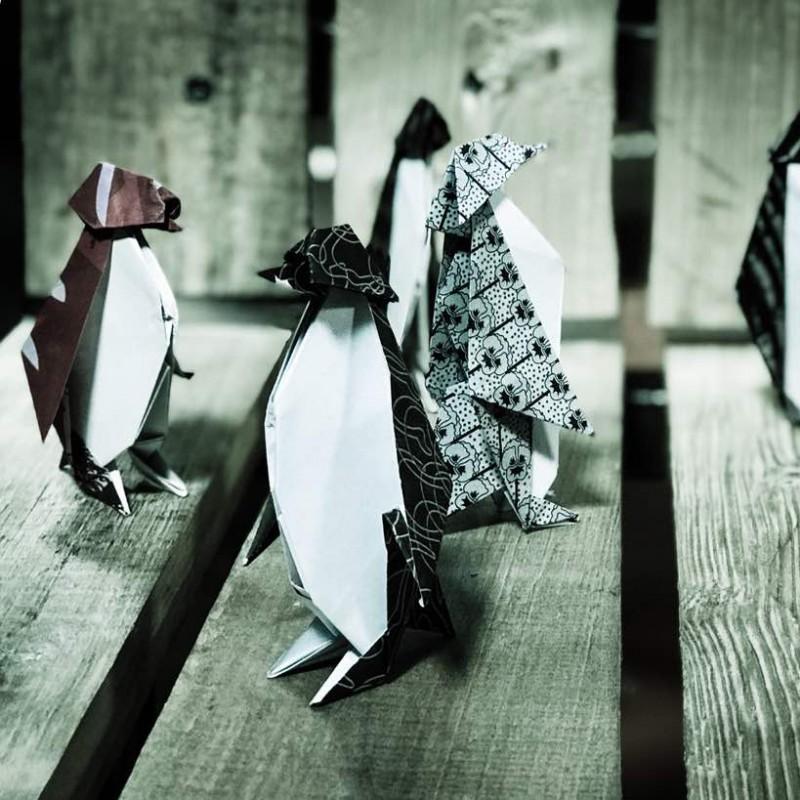 «مرگ و پنگوئن» به روایت پیام دهکردی در تئاترشهر | عکس