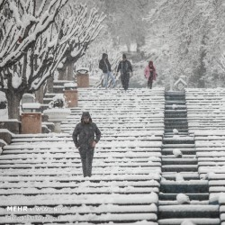 تهران برفی | عکس