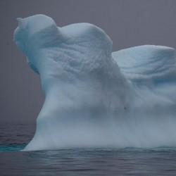 زیباییهای قطب جنوب | عکس