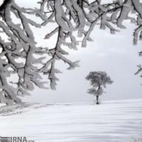 طبیعت زمستانی خراسان شمالی | عکس