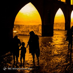 شبهای زایندهرود | عکس