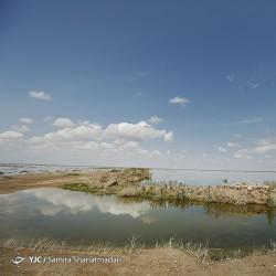 بازگشت آب به تالاب بند علی خان | عکس