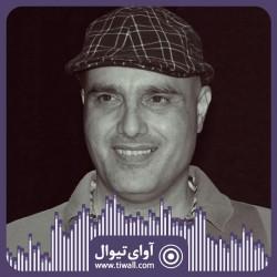 نمایش نینوچکا | گفتگوی تیوال با سعید داخ | عکس
