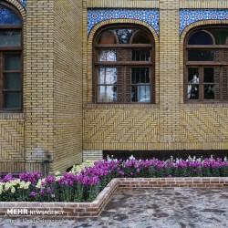 طراوت بهاری یزد | عکس