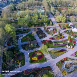 قدم زدن مجازی در باغ لاله ها | عکس
