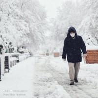 بهار برفی همدان | عکس