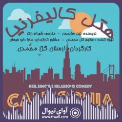 نمایش هتل کالیفرنیا | گفتگوی تیوال با ارسلان گل محمدی  | عکس