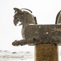 تخت جمشید برفی | عکس