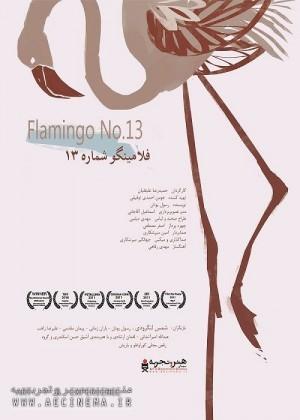 عکس فیلم فلامینگو شماره ۱۳ (هنر و تجربه)