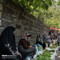 سه شنبه بازار محلی املش | عکس