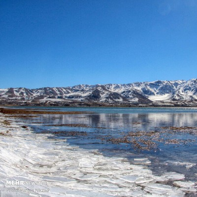 زمستان تالاب بین المللی چغاخور | عکس