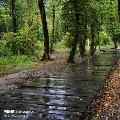 باران پاییزی گرگان | عکس
