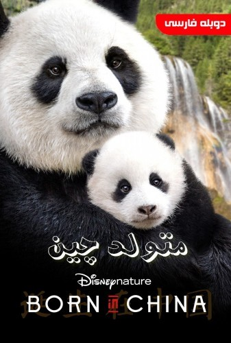 عکس مستند متولد چین