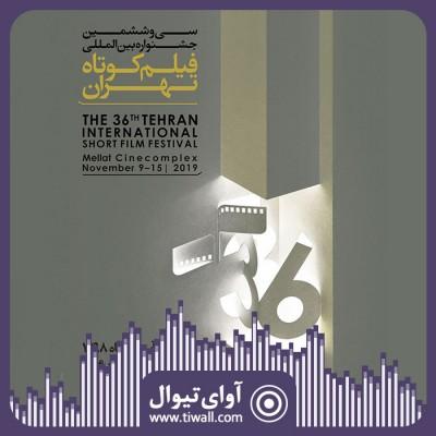 روزانه سی و ششمین جشنواره فیلم کوتاه تهران، شماره هفتم | عکس