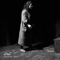 نمایش سگ های مرده   گزارش تصویری تیوال از نمایش سگ های مرده / عکاس: سید ضیا الدین صفویان   عکس