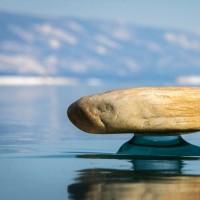 دریاچه بایکال سیبری | عکس