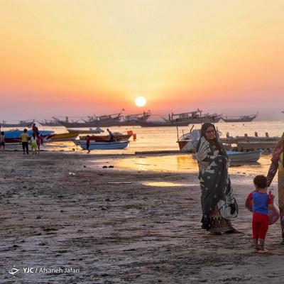 جزیره شیف؛ بوشهر | عکس