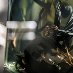 گزارش تصویری نمایشگاه موجودیت/ عکاس: سارا ثقفی | عکس