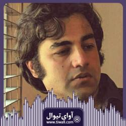 نمایش هفت دقیقه   گفتگوی تیوال با آرش عباسی   عکس