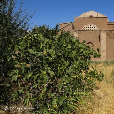 ابنیه و جاذبههای تاریخی شهر کهک قم | عکس