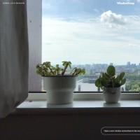 پنجرههایی رو به جهان   London, UK